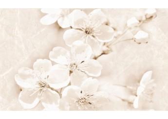 CERSANIT SOFI INSERTO FLOWER декор: фото - магазин Svit Keramiki