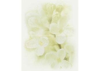 Плитка CERSANIT ANDREA FLOWER декор2: фото - магазин Svit Keramiki