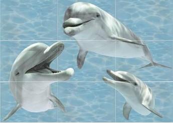 Плитка Береза Керамика ЛАЗУРЬ дельфин декор-панно из 8-ми шт.: фото - магазин Svit Keramiki