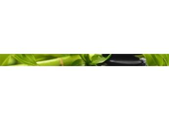 Плитка GOLDEN TILE RELAX зеленый 494301 фриз: фото - магазин Svit Keramiki