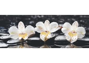 Плитка Интеркерама PERGAMO черный 082-1 декор: фото - магазин Svit Keramiki