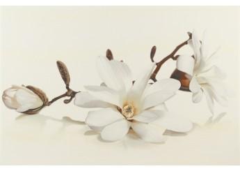 FLORA MAGNOLIA декор: фото - магазин Svit Keramiki